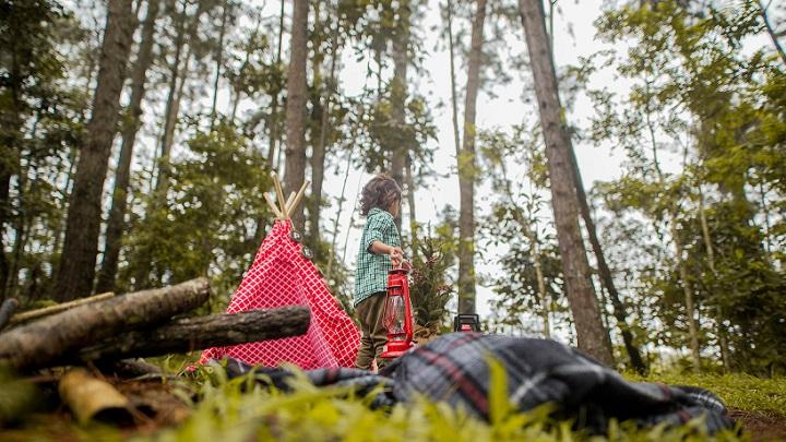 campamento-de-verano